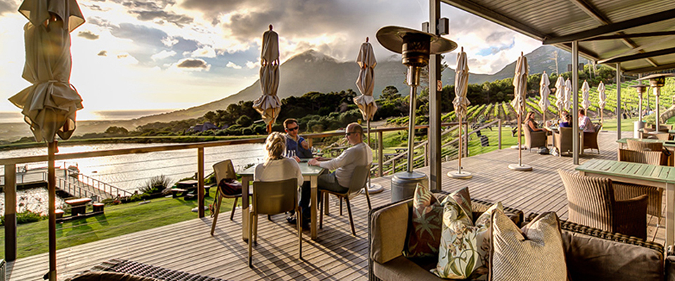 cape-point-vineyards