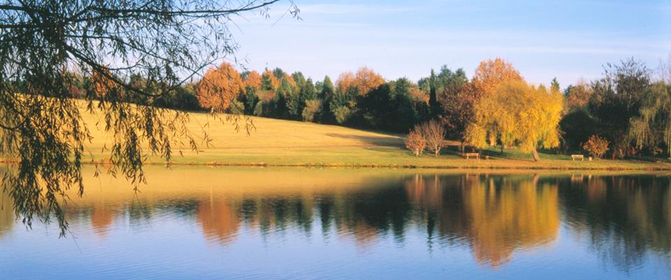 Image of Emmarentia Dam