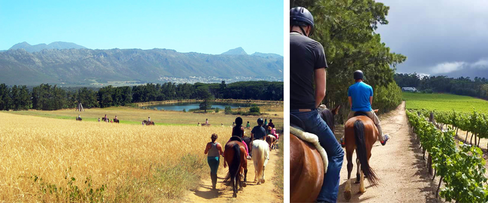 Journeys End Horseback Rides