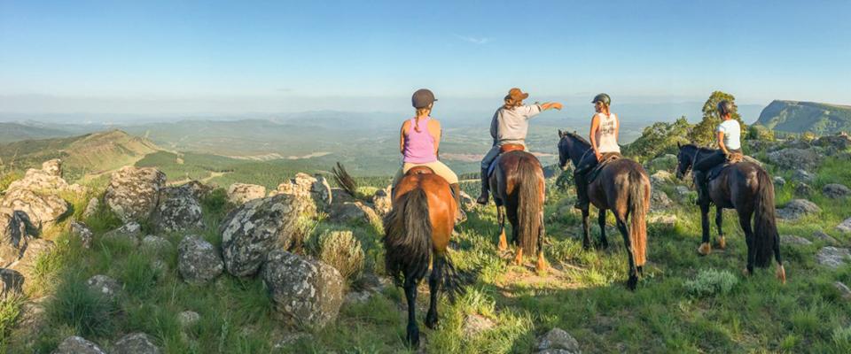 Kaapsehoop Horse Trails
