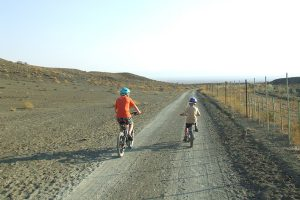 Two boys cycling on a road at Skoorsteenberg Farm & Cottages